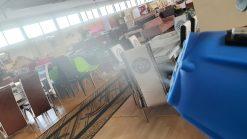 IMG 20200513 WA0061 Nebulizator electric spray pentru dezinfectie | EFOG 3 | EMILTEC - SHOP unilift.ro
